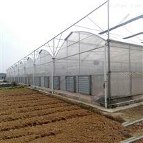 城市现代农业 连栋水培薄膜温室 蔬菜大棚