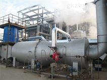 直燃式废气焚烧炉(TNV)
