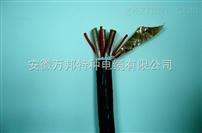 聚氯乙烯绝缘补偿电缆供应商