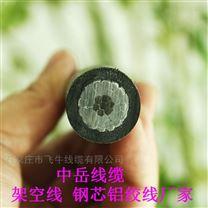 湖北宜昌架空线 钢芯铝绞线厂家