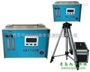 旭宇TQ-1000大气采样器/双气路采样器