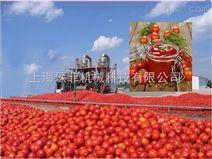 自动番茄酱高产加工生产线