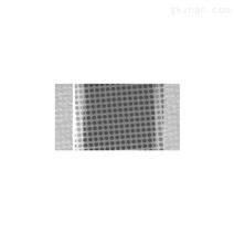 赫尔纳-供应德国QUANTIFOIL多孔碳膜