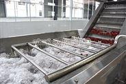 楊梅汁加工生産線