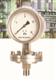 安徽天康法兰式隔膜耐震压力表系列