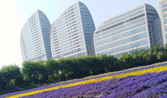新规来了!北京加油加气作业区禁止扫码支付等使用手机的行为