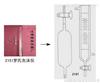 2151型罗氏泡沫仪/罗氏泡沫仪测定仪