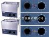 SK2200HP超声波清洗器SK2200HP高频超声波清洗器